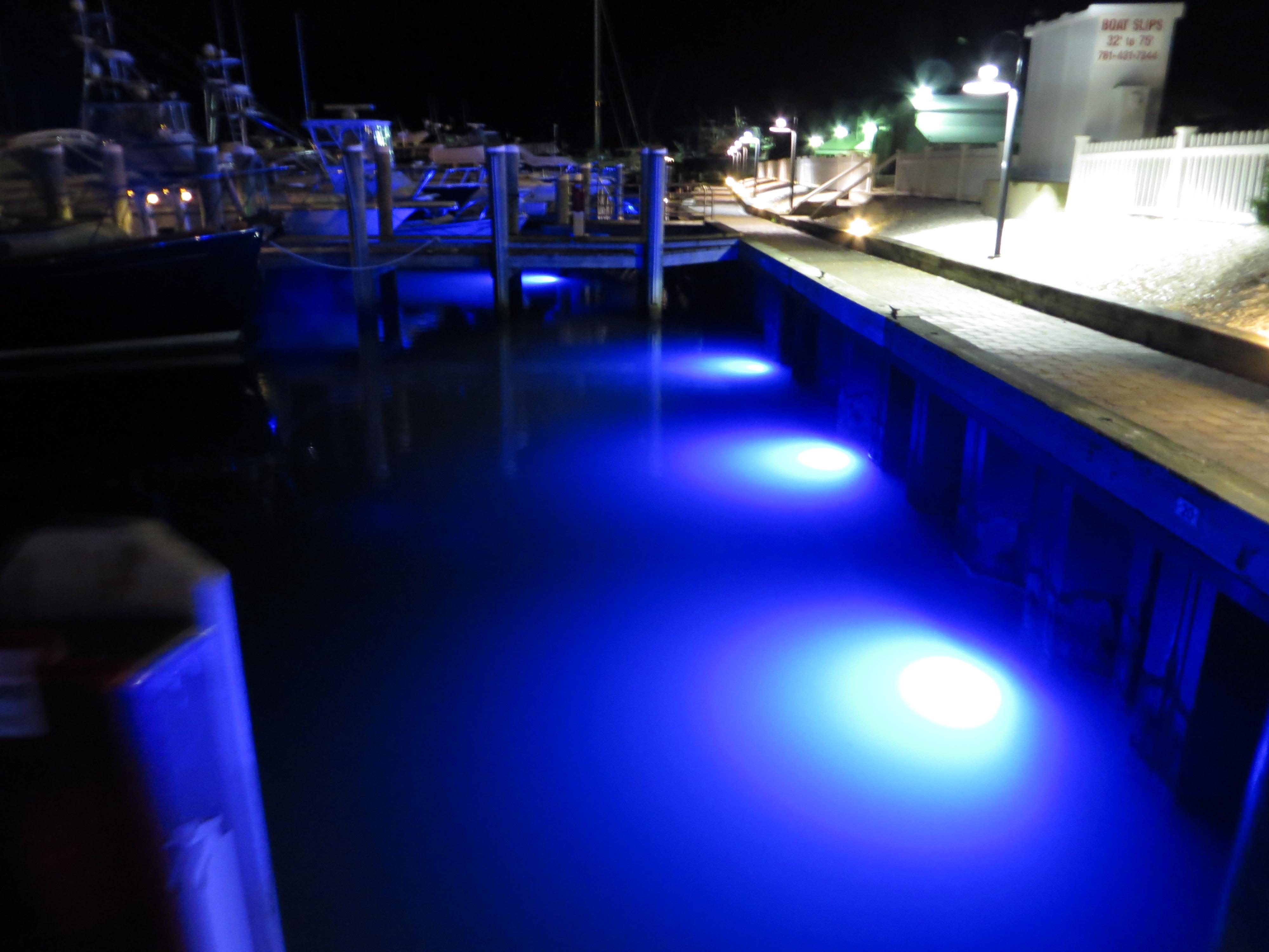 photo gallery - loomis ledloomis led, Reel Combo