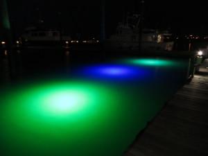 3 75 Watt Dock Lights W Transformer Loomis
