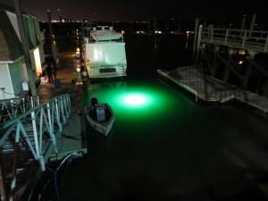 Loomis led light photo 2