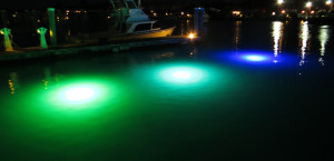 Loomis LED underwater Dock Light for Shallow Water